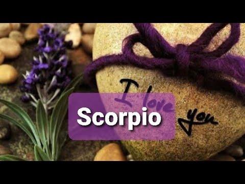 SCORPIO ♏ THE WAIT WILL GET OVER❤️😍 AMAZING END 😍 November 2019 #tarot reading forecast #horoscope