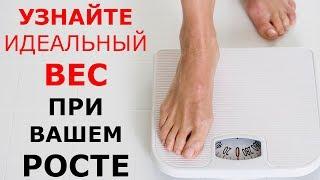 Сколько сому лет если вес 13 кг