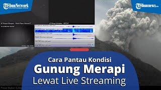 Begini Cara Pantau Kondisi Gunung Merapi Melalui Siaran Live Streaming CCTV dan Seismik