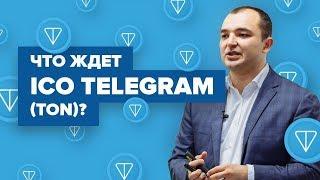 Почему ICO мессенджера Павла Дурова Telegram (TON) обречено на успех?