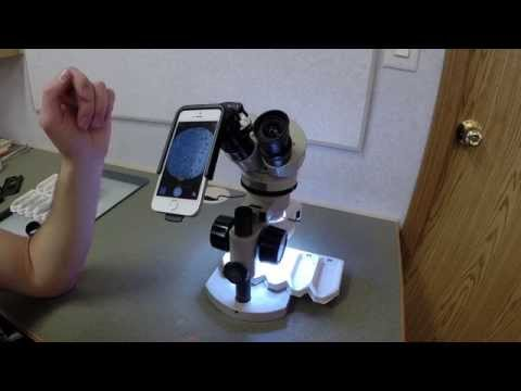 Magnifi Iphone Photoadapter Product Review