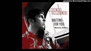 Josh Kumra - Waiting For You (Wookie Remix)