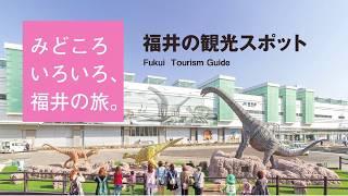 福井県・観光スポット情報
