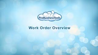 ProBusinessTools video