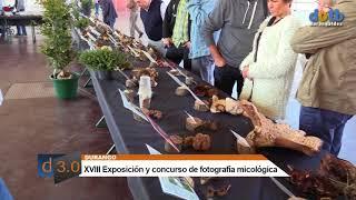 dotb Exposición micológica Errotari Durango 2017-10-08