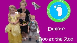 Fun-Sized Friday: Explore Boo at the Zoo