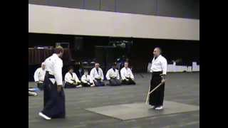 Heiho Niten Ichi Ryu Demonstration