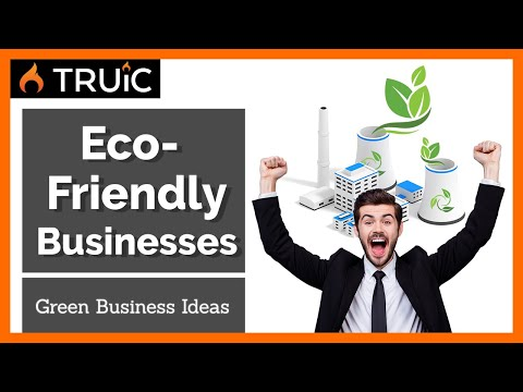 6 Eco-Friendly Business Ideas  (Green Businesses for 2019)