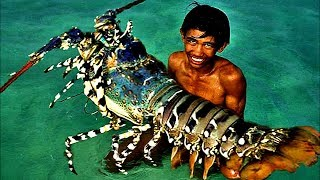 Top 5 Biggest Lobsters Ever Caught   Kholo.pk