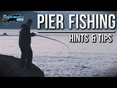 Fishing from a Pier – Rigs, Tips & Tactics | TAFishing