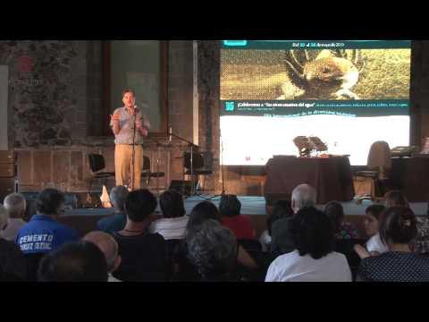 Iniciativas de restauración en los humedales de Xochimilco