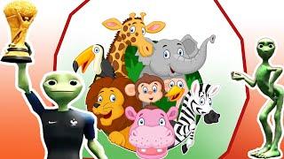 Dạy tên các con vật cho bé học nói nhanh #3