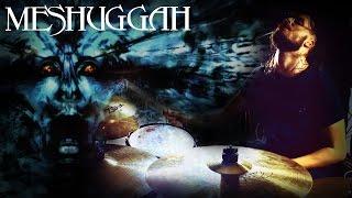 Meshuggah - Straws Pulled At Random (cover)