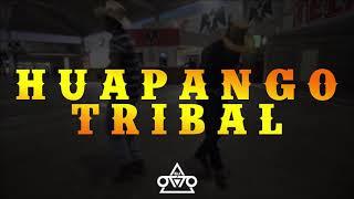 "Video thumbnail of ""Huapango Tribal - Dj Otto (acordeon) 2019"""