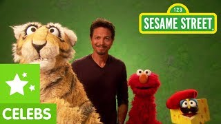 Sesame Street: Benjamin Bratt and Elmo translate for a Tiger