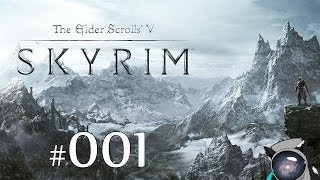 The Elder Scrolls V: Skyrim #001 - Вводная