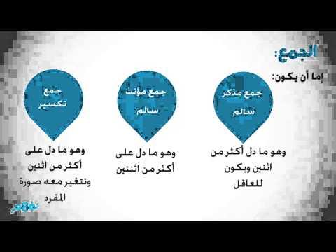 الاسم المفرد والمثنى والجمع نحو و إملاء منهج اللغة العربية الصف الرابع الإبتدائي الفصل الدراسي الثاني