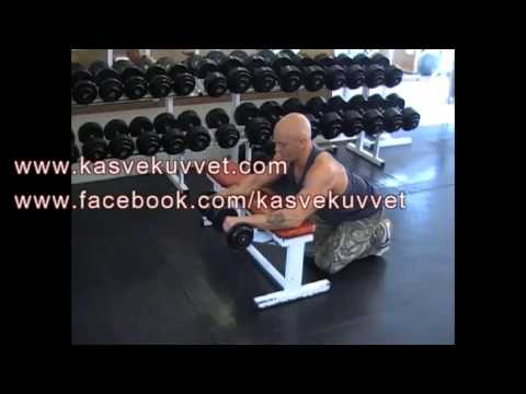 Reverse Dumbell Wrist Curl Over Bench