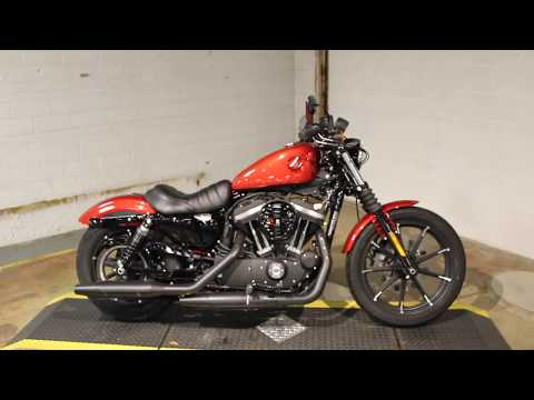 2019 Harley-Davidson Iron 883™ in New London, Connecticut - Video 1