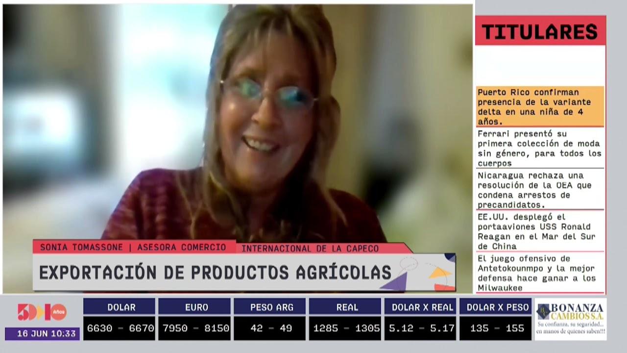 Sonia Tomassone - Exportación de productos agrícolas