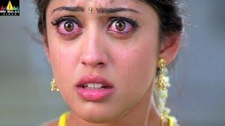 Baava Movie Siddharth & Pranitha Marriage Scene | Latest Telugu Scenes | Sri Balaji Video