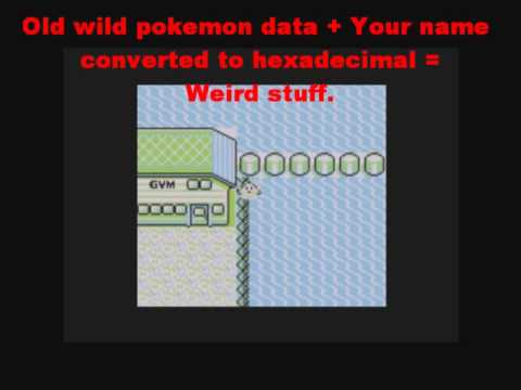 Your Childhood Explained: Why Missingno Works