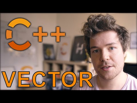 VECTOR/DYNAMIC ARRAY -  Making DATA STRUCTURES in C++