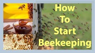 Beekeeping How To Start Beekeeping