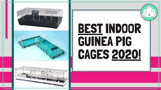 Guinea Pig Indoor Cages 2020 | How Big?! Pros, Cons And The Top Three Cages On The Market