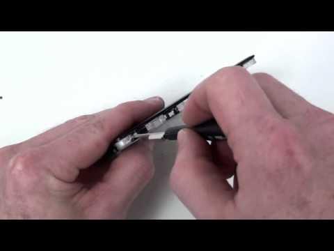 Come trattare varicosity a uomini su testicoli che le targhe