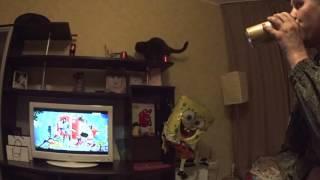 Кот упал и его месть