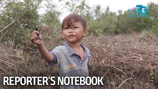 Reporter's Notebook: Pamilya, nangunguha ng suso sa bakawan para may makain habang may pandemya