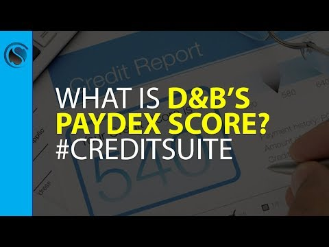 What is D&B's PAYDEX Score? #creditsuite
