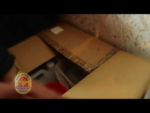 В Красноярске мужчина выращивал в квартире марихуану