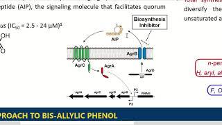 Synthesis of Ambuic Acid Analogues to Target the Virulence of MRSA