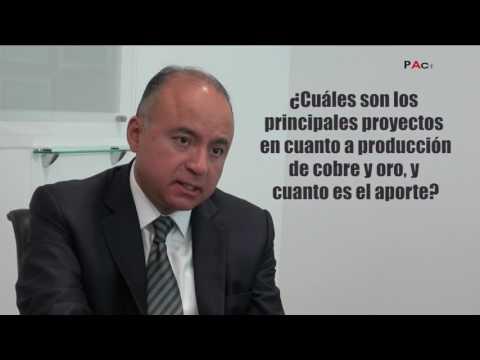 Entrevista a Víctor Gobitz, Presidente del Instituto de Ingenieros de Minas del Perú (I DE II)