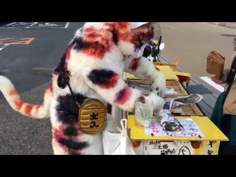 """Vendedor ambulante causa sensación con disfraz de """"gato gigante"""""""