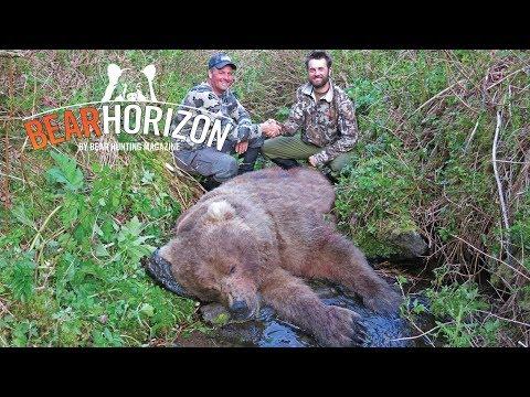 Novoroční lov medvěda