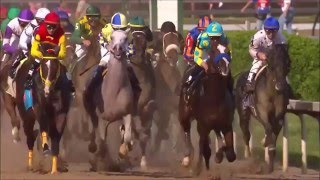 The Truth Behind Horse Racing