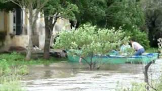 preview picture of video 'Llegando a la protectora de animales de Chajarí en bote.'