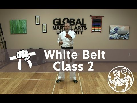 Shotokan Karate Follow Along Class - 9th Kyu White Belt - Class #2