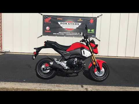 2019 Honda Grom in Greenville, North Carolina - Video 1