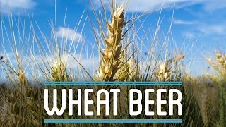 Wheat Beer | How to Brew Everything