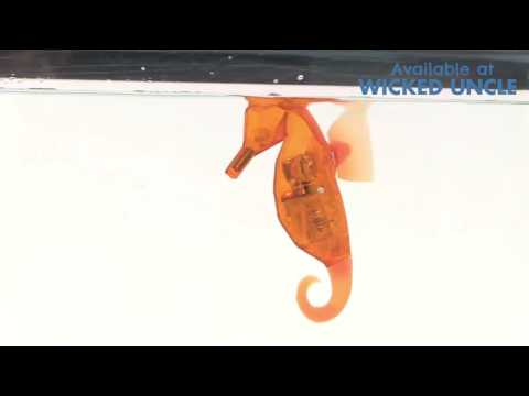 Youtube Video for Aquabot Seahorse with Tank - Mesmerizing!