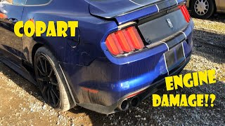 You wont Believe what I Found with this Shelby GT350 from Copart!!!