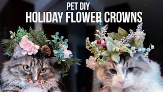 DIY Holiday Flower Crowns For PETS!