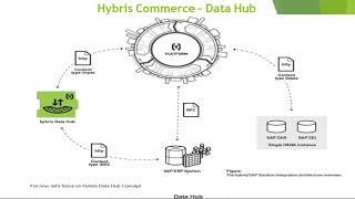 SAP Hybris Datahub Unit 8