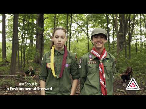 Reason #4: A Scout is… An Environmental Steward