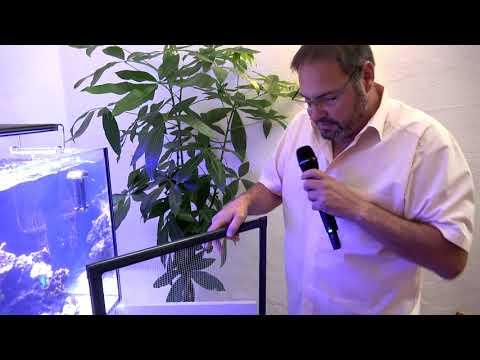 Showtank Teil 21:Cyanobakterien, Fische, DIY Netzabdeckung