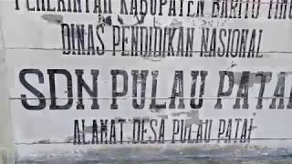 preview picture of video 'SDN Pulau Patai Kec. Dusun Timur Kab. Barito Timur'